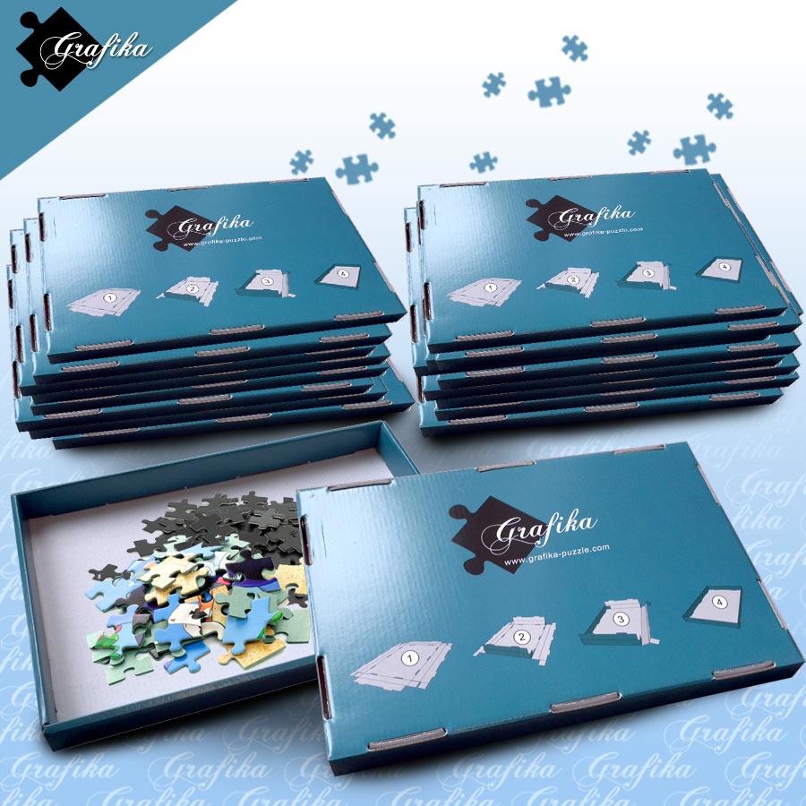 http://data.my-puzzle.fr/grafika.133/lot-de-20-boites-de-tri-bleues-24-x-22-x-2-5-cm.46906-1.fs.jpg