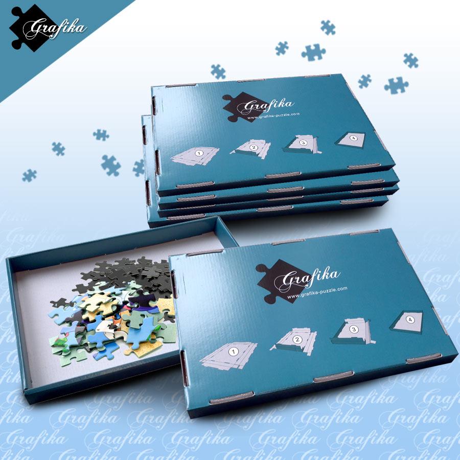 http://data.my-puzzle.fr/grafika.133/lot-de-6-boites-de-tri-bleues-24-x-22-x-2-5-cm.46904-1.fs.jpg